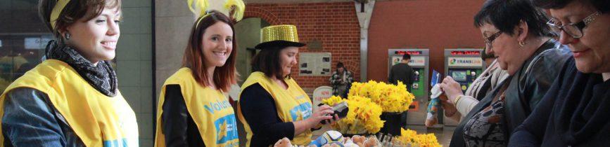 daffodil day volunteers