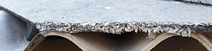 Guides For Asbestos and Mesothelioma Survival Rates